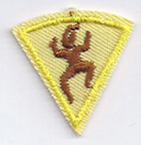 1st Year Participation Patch