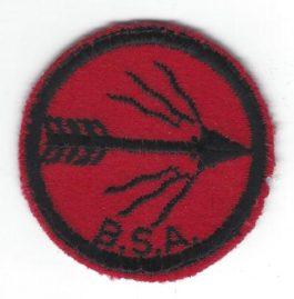 Blazing Arrow Patrol Patch