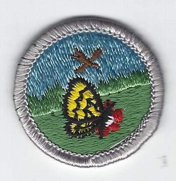 Nature Merit Badge
